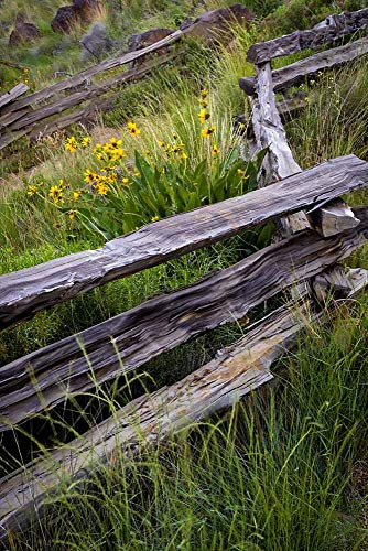 (Split Rail Fence in Smith Rock State Park, Oregon by Jaynes Gallery/Danita Delimont Art Print, 12 x 18)