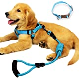 Yusenpet Dog Leash Harness Set with Collar & Heavy Duty Denim Dog Leash Collar for Small, Medium and Large Dog, Perfect for Dog Daily Training Walking Running