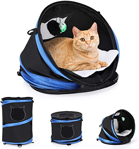 Lazmin Portador para Gatos, Portador para Gatos Plegable Multifuncional con Cama acogedora, Portador de Viaje para Mascotas Convertible 3 en 1 para Perros y Gatos.: Amazon.es: Electrónica