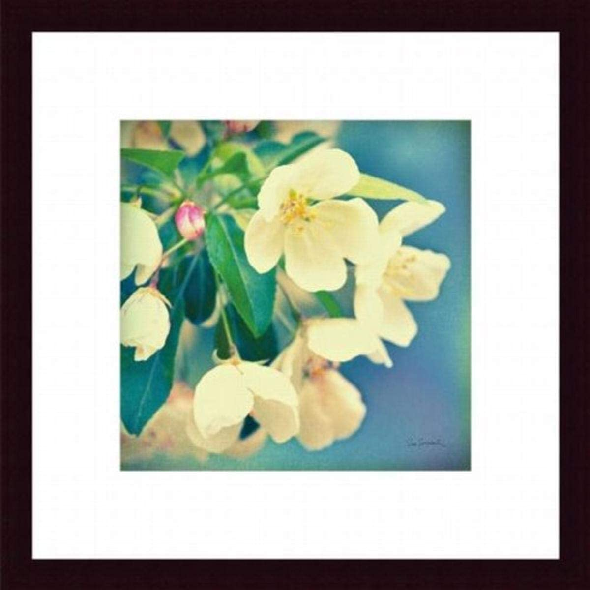 Printfinders Natures Apple Blossom by Sue Schlabach Art Print