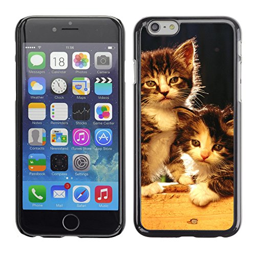 Premio Sottile Slim Cassa Custodia Case Cover Shell // V00003215 chatons nouveau-nés mignons // Apple iPhone 6 6S 6G PLUS 5.5""