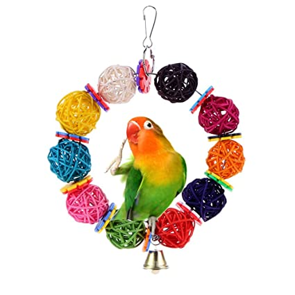 Home & Garden Analytical Parrot Bird Toys Natural Wood Acrylic Non-toxic Chew Toy Chewing Hanging Rope Swing Funny Toys With Chains Pet Bird Accessorie