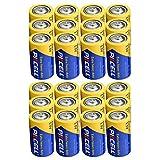 Best D Batteries - D Size Battery Extra Heavy Duty R20P UM1 Review