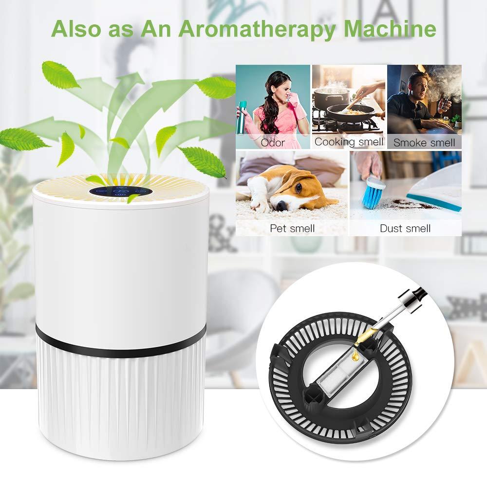 Duomishu Air Purifier mit Nachtlicht 3 Timer-Funktion 4 Stufen-Filterung f/ür 99,97/% Filterleistung gegen Staub Pollen Geruch f/ür Allergiker und Raucher Luftreiniger mit HEPA Filter und Ionisator