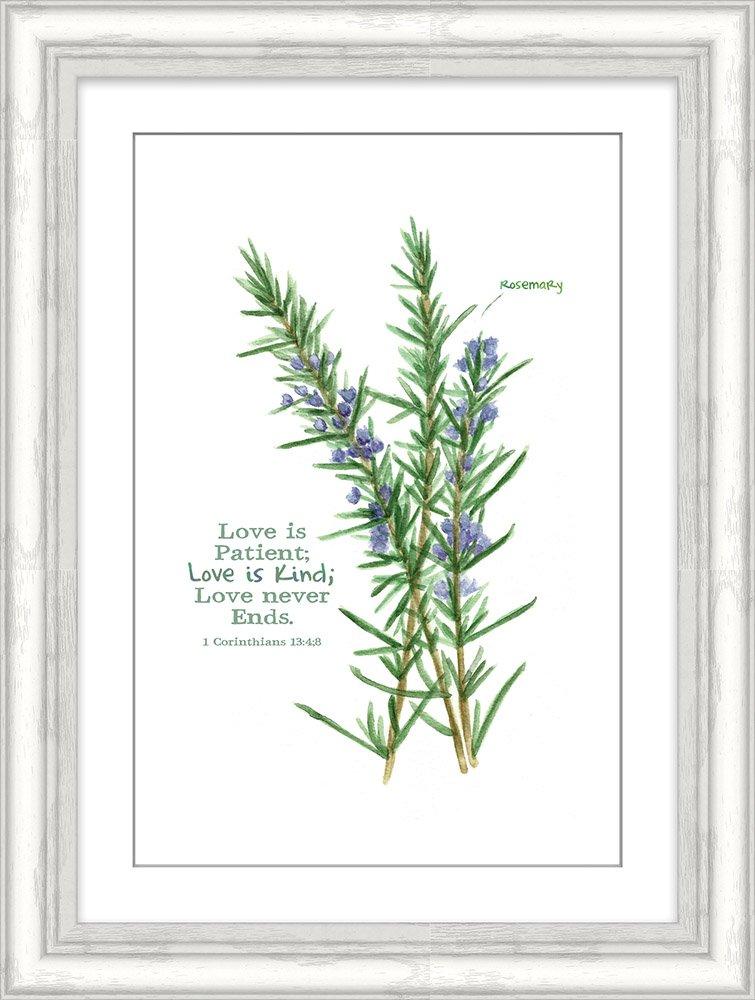 Carpentree 14 x 10 x 0.25 Rosemary Herb Framed Art