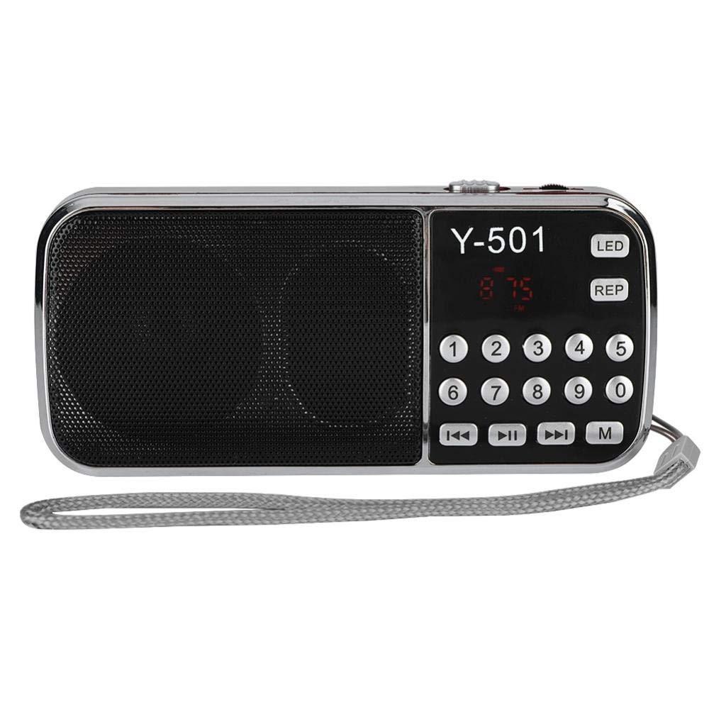 Denash Radio FM Num/érique Portable 78-108 MHz Adapt/é Aux Personnes /âg/ées Fonction Lampe Poche LED Support USB//TF//FM//AUX Grand /écran LCD Bleu