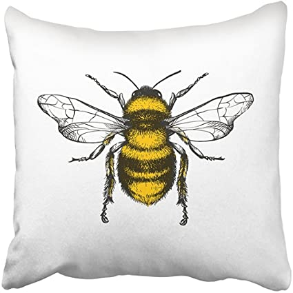 Amazoncom Throw Pillow Covers Print Black Insect Engraving Honey