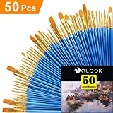 Paint Brush Set, 50 pcs/5 Pack Nylon Hair Brushes for All Purpose Acrylic Oil Ink Watercolor Face Painting Artist Professional Paintbrush Kits
