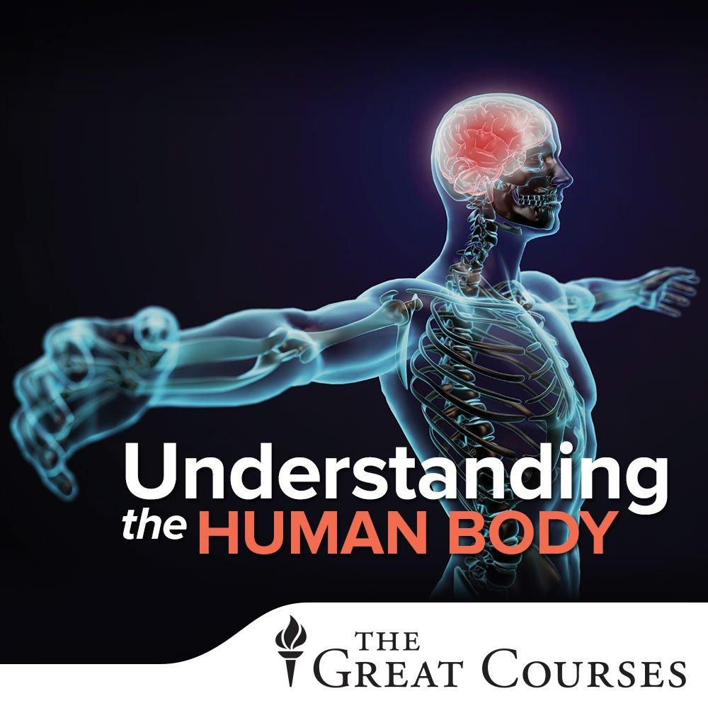 Groß Anatomy And Physiology Lectures Mp3 Zeitgenössisch ...