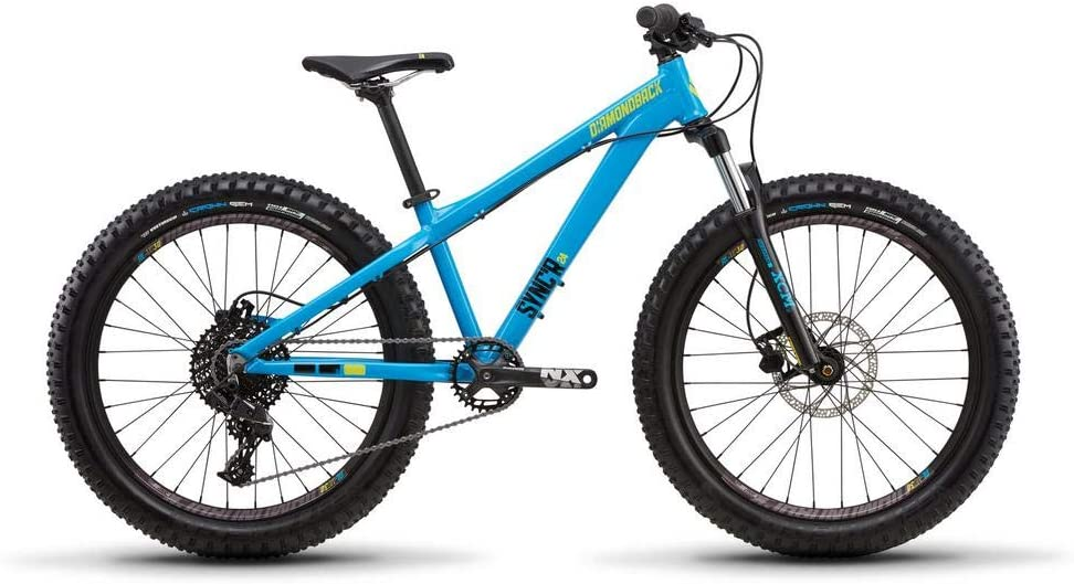 Top 9 Best Kid Mountain Bike (2020 Reviews & Buying Guide) 8