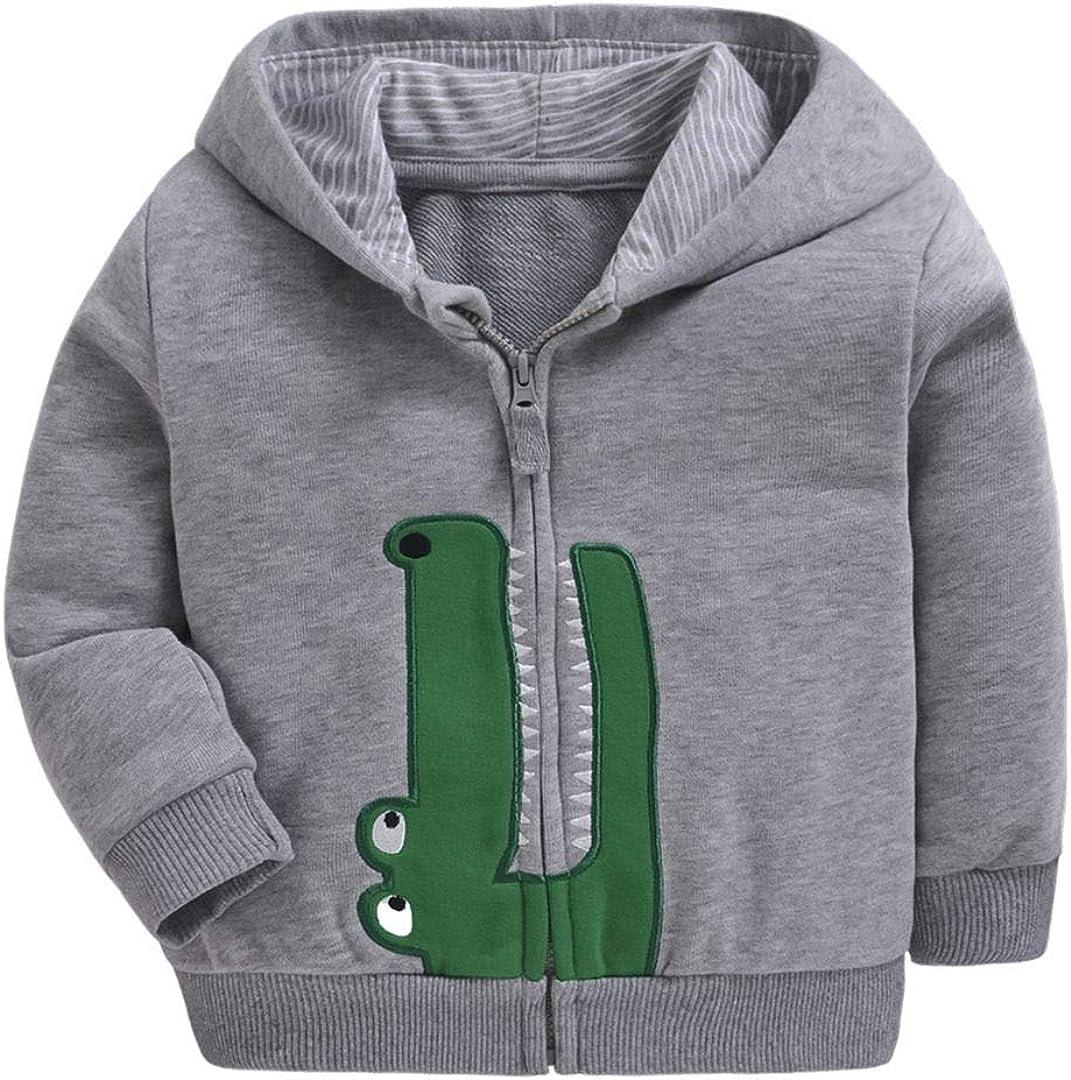 Dealone Baby Boys Long Sleeve Dinosaur Hoodies Kids Sweatshirt Toddler Zip-up Fleece Jacket Grey