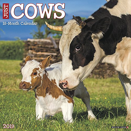 Just Cows 2019 Wall Calendar -
