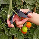 HANZHIUP Efficient Harvesting Vegetables Scissors Fruit Cutters Pickers, Convenient Improve Work Efficiency