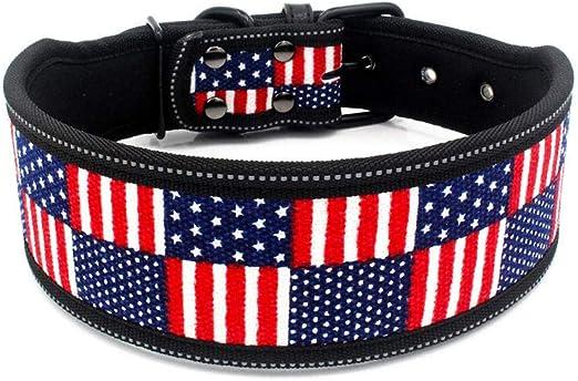 Alistacc Collar para Perros Resalte Collar para Mascotas Material De Buceo Collar De Perro Bandera Azul Impermeable Cadena De Perro Suministros para Mascotas @L_: Amazon.es: Productos para mascotas