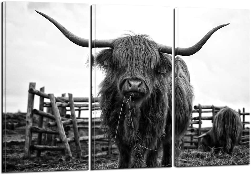 Nachi Wall - 3 Piece Animal Canvas Wall Art Black and White Highland Cow Pictures Longhorn Cattle Wall Painting Prints Contemporary Artwork Living Room Farmhouse Decorations