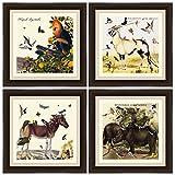 PTM Images ''Vintage Animals'' Artwork, 14 by 14-Inch, Espresso, Set of 4