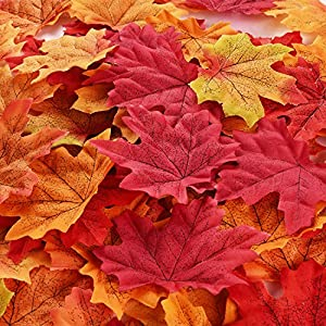 BBTO 500 Pieces Assorted Mixed Fall Leaves Colored Artificial Maple Leaves Weddings, Events Decorating 108