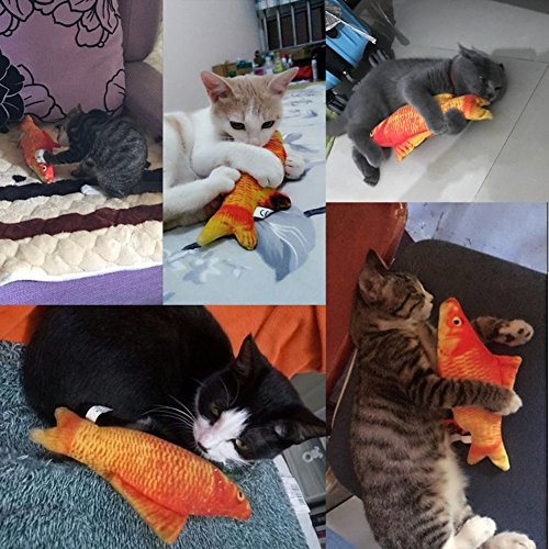 Amazon.com : Coolfm Catnip Toys Fish Cat Toy Catnip Toys Simulation Plush Fish Shape Doll Interactive Pets Pillow Chew Bite Supplies for Cat/Kitty/Kitten ...