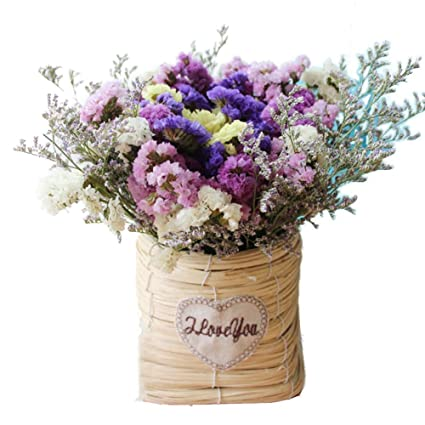 TELLW Natural Dried Flower Bouquet Set True Flowers Forget Me Not Home Decoration