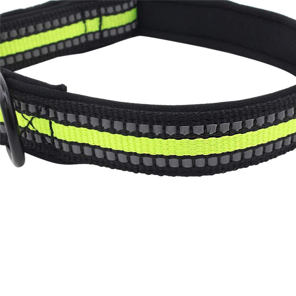CAOAO - Collar Ajustable con Hebilla de liberación rápida de ...