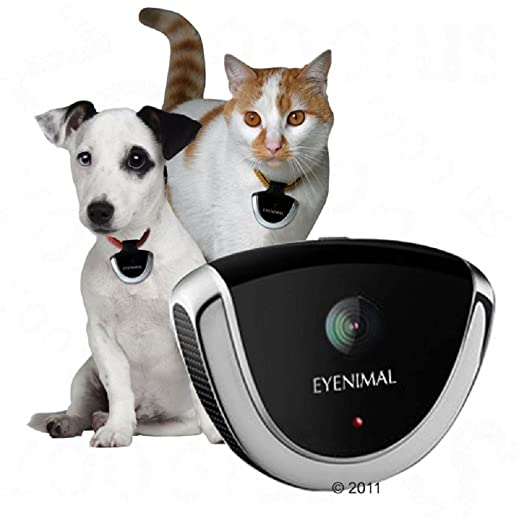 EYENIMAL Perro Gato Cuello Mascota Gadget de cámaras de ...