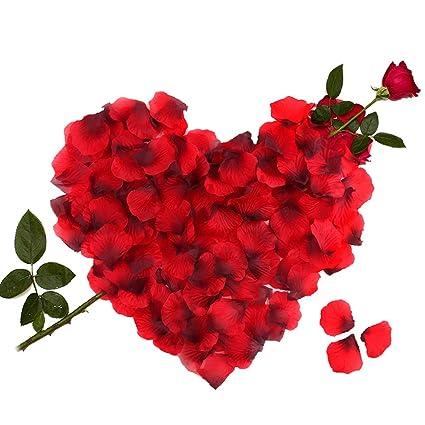 3000 Piezas Pétalos De Rosa Hermosos Rojo Flores De Rose Para El