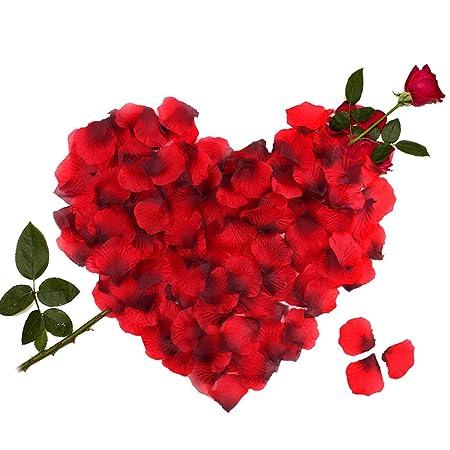 3000 Piezas Pétalos de Rosa, Hermosos Rojo Flores de Rose para el banquete de boda y la atmósfera romántica - Perfecta Día de San Valentín & Bodas ...
