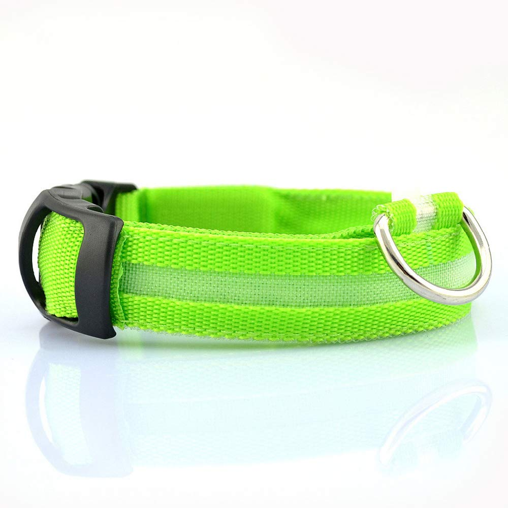 Green X-Small(12.60'' 11.75'') Green X-Small(12.60'' 11.75'') LED Dog Collar, USB Rechargeable Nylon Webbing Adjustable Glowing Pet Safety Collar, Reflective Light Up Collars Small Medium Large DogsGreen