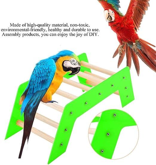 HEEPDD Escalera para Mascotas Puente De Madera De Pie Escalada Diapositiva Escalera Loro Juguetes Educativos para Guacamayos Grises Africanos Periquitos Perico Cockatiel Cacatúa Lovebird (Verde): Amazon.es: Productos para mascotas