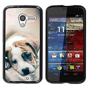 YOYOYO Smartphone Protección Defender Duro Negro Funda Imagen Diseño Carcasa Tapa Case Skin Cover Para Motorola Moto X 1 1st GEN I XT1058 XT1053 XT1052 XT1056 XT1060 XT1055 - bebé lindo borrosa luces de cachorro de piel
