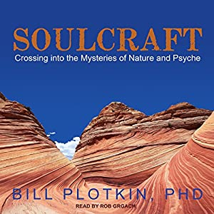 Soulcraft Audiobook