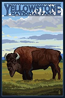 product image for Yellowstone National Park, Wyoming - Bison Scene (9x12 Art Print, Wall Decor Travel Poster)