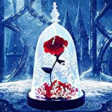 lEPECQ Rose Forever, Enchanted Rose, Red Rose Gift for Her with Colorful Led Light in Glass Dome on Wooden Base for Valentines Day Mother's Day Wedding Anniversary as Home Decor