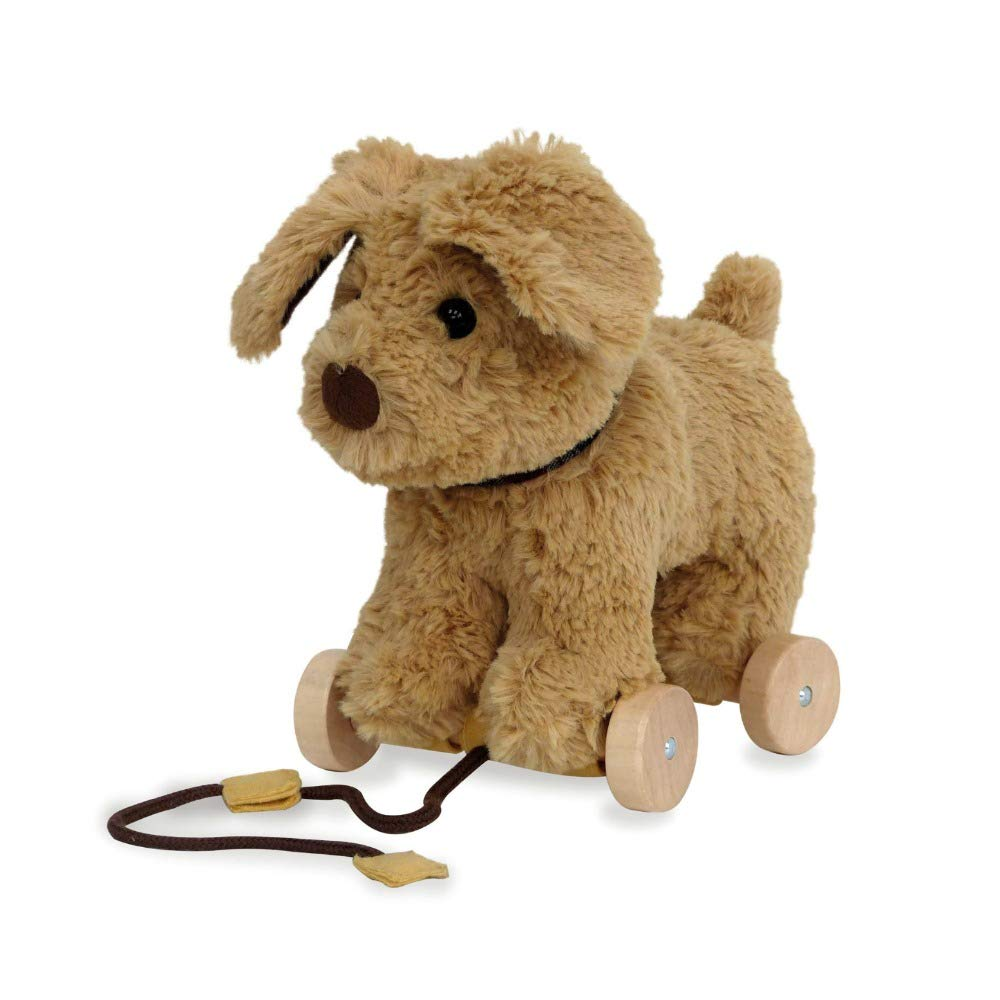Little Bird Told Me Pull Along Toddler Toy Dexter Dog