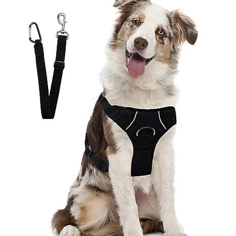 SCENEREAL CO. Schenereal - Arnés de seguridad para perros con ...