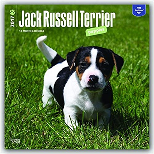 Download terrier jack russell ebook