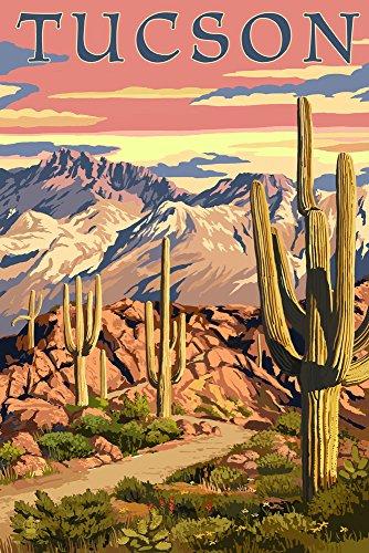 Tucson, Arizona Sunset Desert Scene (12x18 Art Print, Wall Decor Travel Poster)