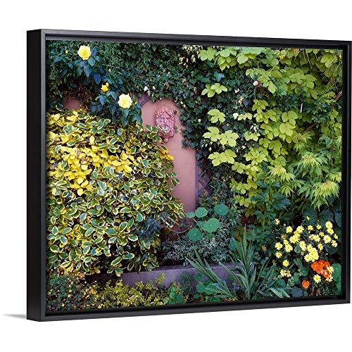(The Irish Image Collection Floating Frame Premium Canvas with Black Frame Wall Art Print Entitled The Courtyard Garden, Fairfield Lodge, Dublin, Ireland)