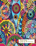 Books : 2019 Planner: A Year - 365 Daily - 52 Week-Daily Weekly Monthly Planner Calendar, Journal Planner and Notebook, Agenda Schedule Organizer, Appointment ... Designs (January 2019 to December 2019)