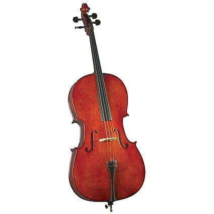 Amazon.com: Cervini HC-100 novato violonchelo – 4/4 tamaño ...