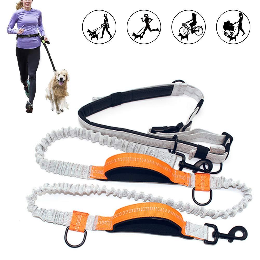 AZLZM Hands Free Dog Leash for Running Walking Jogging,Adjustable Dual Handle,Orange