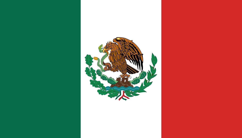 Flaggenfritze/® Tischflagge Mexiko 10x15 cm