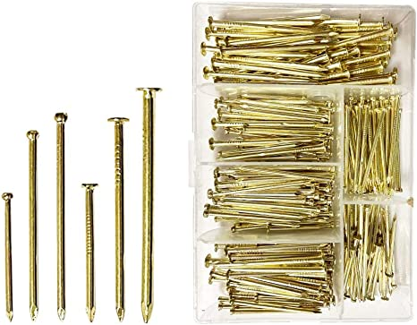 Tuplip Fe 360pcs Nails Assortment kit Brass Plated 6 Size, Nails for Hanging Pictures, Gold Nails, Small Brass Nails, Finishing Nails, Wood Nails, Small Nail, Nails Hardware, Pin Nails, Hanging Nails
