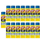 Professional Strength Graffiti Remover 18 oz (15 pack)