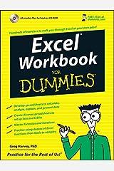 Excel Workbook For Dummies Paperback