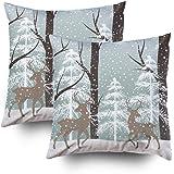 Amazon.com: BLEUM CADE Set of 4 Decorative Throw Pillow ...
