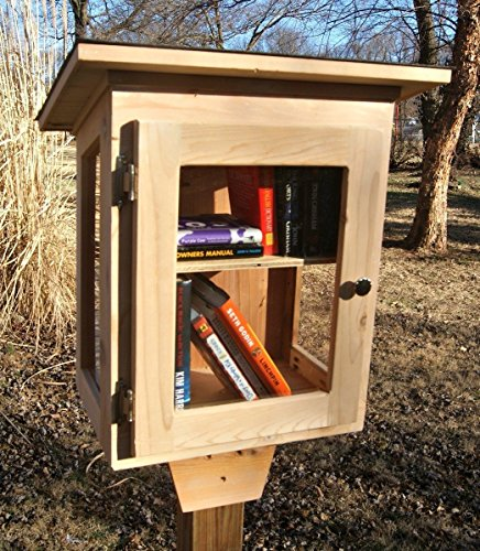 Little Library, with window walls. Handmade using Cedar (Little Using House)