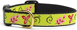 """product image for Up Country Green Floral Dog Collar with Quick Release Buckle - X-Small (6""""-12"""") Width 5/8 in"""