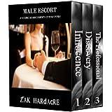Male Escort Series Boxed Set: (Books 1-3)