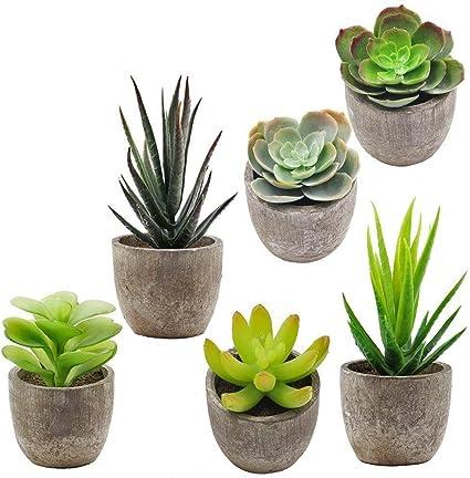 Supla 6 Pcs Assorted Potted Succulents Plants Decorative Artificial Succulent Pl